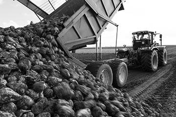jordbruk_8